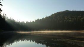 Ευτυχές ρομαντικό ζεύγος στα ουκρανικά εθνικά ενδύματα που στέκονται στο ηλιοβασίλεμα στη χρυσή υδρονέφωση στη γραφική λίμνη βουν απόθεμα βίντεο