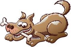 Ευτυχές σκυλί που μασά ένα κόκκαλο Στοκ εικόνα με δικαίωμα ελεύθερης χρήσης