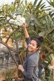 Ευτυχές χαμόγελου καμποτζιανό Khmer κοριτσιών δέντρο λουλουδιών Champey Plumeria εκμετάλλευσης άσπρο Στοκ εικόνα με δικαίωμα ελεύθερης χρήσης