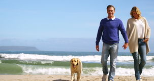 Ευτυχές ώριμο ζεύγος που περπατά με το σκυλί στην παραλία απόθεμα βίντεο