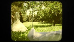 Ευτυχές Newlyweds που περπατά στην πράσινη εκμετάλλευση πάρκων απόθεμα βίντεο
