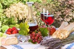 ευτυχές picnic Στοκ Εικόνες