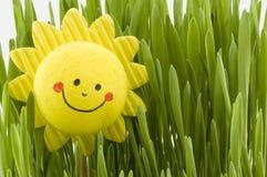 ευτυχής ήλιος Στοκ φωτογραφία με δικαίωμα ελεύθερης χρήσης