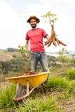 Ευτυχής αγρότης που κρατά τα προϊόντα μανιόκας του μια ηλιόλουστη ημέρα Στοκ Φωτογραφίες