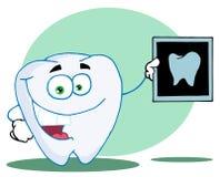 ευτυχής ακτίνα X δοντιών ελεύθερη απεικόνιση δικαιώματος