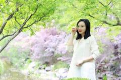 Ευτυχής ασιατική κινεζική όμορφη στάση γυναικών κάτω από το δέντρο στη φύση την άνοιξη υπαίθρια Στοκ Εικόνα
