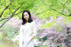 Ευτυχής ασιατική κινεζική όμορφη στάση γυναικών κάτω από το δέντρο στη φύση την άνοιξη υπαίθρια Στοκ Φωτογραφία