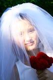 ευτυχής γάμος κοριτσιών &p Στοκ Εικόνες