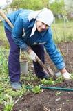 ευτυχής γυναίκα αγροτών Στοκ Φωτογραφίες