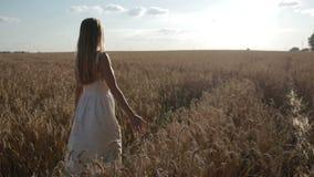 Ευτυχής γυναίκα που περπατά στο χρυσό τομέα σίτου