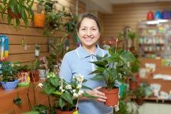 Ευτυχής γυναίκα στο κατάστημα λουλουδιών Στοκ φωτογραφία με δικαίωμα ελεύθερης χρήσης