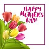 Ευτυχής εγγραφή ημέρας μητέρων Ευχετήρια κάρτα ημέρας μητέρων με τα ανθίζοντας λουλούδια τουλιπών Στοκ Φωτογραφία