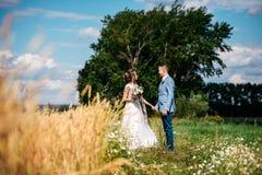 ευτυχής εκλεκτής ποιότητας γάμος ημέρας ζευγών ιματισμού τα όμορφα παιδιά νυφών καλλωπίζουν μικρό Στοκ εικόνα με δικαίωμα ελεύθερης χρήσης