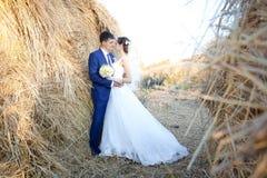 ευτυχής εκλεκτής ποιότητας γάμος ημέρας ζευγών ιματισμού Στοκ Εικόνες