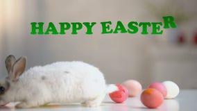 Ευτυχής επιγραφή Πάσχας, γούνινο λαγουδάκι με τα χρωματισμένα αυγά στον πίνακα, ευχετήρια κάρτα φιλμ μικρού μήκους
