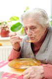 Ευτυχής ηλικιωμένη γκρίζος-μαλλιαρή γυναίκα Στοκ Φωτογραφία
