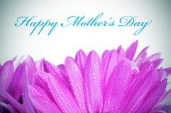 Ευτυχής ημέρα μητέρων στοκ εικόνες