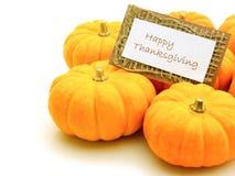 Ευτυχής ημέρα των ευχαριστιών στοκ εικόνα