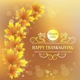 ευτυχής ημέρα των ευχαριστιών isolated leaf maple Εκλεκτής ποιότητας σχέδιο για τον ευτυχή εορτασμό ημέρας των ευχαριστιών Στοκ Εικόνες