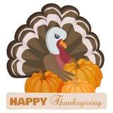 Ευτυχής κάρτα ημέρας των ευχαριστιών με τα κινούμενα σχέδια Τουρκία και την κολοκύθα απεικόνιση αποθεμάτων