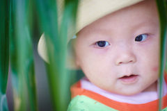 Ευτυχής κινηματογράφηση σε πρώτο πλάνο προσώπου μωρών Στοκ εικόνα με δικαίωμα ελεύθερης χρήσης