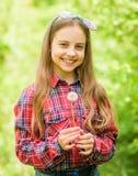 Ευτυχής λαβή παιδιών blowball r r r Rancho και χώρα μικρό κορίτσι και στοκ εικόνες