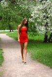 Ευτυχής νέα γυναίκα στο κόκκινο φόρεμα ενάντια στο flo άνοιξη υποβάθρου Στοκ Εικόνες