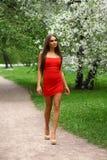 Ευτυχής νέα γυναίκα στο κόκκινο φόρεμα ενάντια στο flo άνοιξη υποβάθρου Στοκ φωτογραφία με δικαίωμα ελεύθερης χρήσης