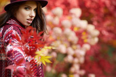 Ευτυχής νέα γυναίκα στο πάρκο την ηλιόλουστη ημέρα φθινοπώρου Εύθυμο beautifu Στοκ Εικόνες