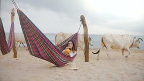 Ευτυχής νέα γυναίκα τουριστών που βρίσκεται στην αιώρα παραλιών στην παραλία με το φανταχτερό κοκτέιλ φρούτων ενώ οι ιερές άσπρες απόθεμα βίντεο