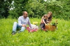 Ευτυχής νέα οικογένεια που έχει το πικ-νίκ Στοκ Φωτογραφίες