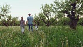Ευτυχής νέα οικογένεια τριών περιπάτων στον κήπο απόθεμα βίντεο