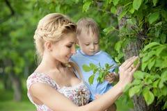Μητέρα και γιος Στοκ εικόνα με δικαίωμα ελεύθερης χρήσης