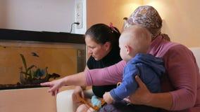 Ευτυχής οικογένεια με ένα μωρό η μητέρα και η γιαγιά της που έχουν τη διασκέδαση στο σπίτι κοντά στο ενυδρείο Γελούν και μιλούν μ απόθεμα βίντεο