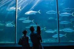 Ευτυχής οικογένεια που εξετάζει τη δεξαμενή ψαριών Στοκ Φωτογραφίες