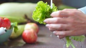 Ευτυχής οικογένεια στην κουζίνα Νέα λαχανικά πλύσης γυναικών για να προετοιμάσει το υγιές γεύμα Σαλάτα Vegan σιτηρέσιο φιλμ μικρού μήκους