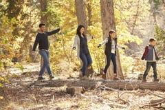 Ευτυχής οικογενειακή εξισορρόπηση σε ένα πεσμένο δέντρο σε ένα δάσος Στοκ Εικόνα