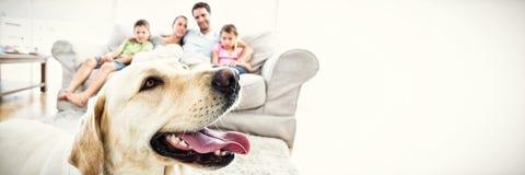 Ευτυχής οικογενειακή συνεδρίαση στον καναπέ με το κατοικίδιο ζώο τους κίτρινο Λαμπραντόρ στο πρώτο πλάνο στοκ φωτογραφίες