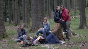 Ευτυχής ομάδα φίλων που στρατοπεδεύουν στα ξύλα που απολαμβάνουν την κιθάρα παιχνιδιού φύσης και τραγούδι ξαπλώνοντας μαζί της χλ φιλμ μικρού μήκους