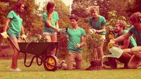 Ευτυχής ομάδα εθελοντών που καλλιεργούν στο πάρκο απόθεμα βίντεο