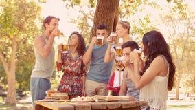 Ευτυχής ομάδα πιντών κατανάλωσης φίλων των μπυρών απόθεμα βίντεο