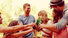 Ευτυχής ομάδα φίλου ενθαρρυντική στο πάρκο με τις μπύρες απόθεμα βίντεο