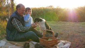 Ευτυχής παιδική ηλικία, εγγονός με το granddad και σκυλί που στηρίζεται στο πικ-νίκ φύσης την άνοιξη φιλμ μικρού μήκους