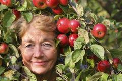 Ευτυχής συλλεκτική μηχανή μήλων Στοκ εικόνα με δικαίωμα ελεύθερης χρήσης