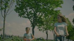 Ευτυχής υγιής οικογενειακή χαλάρωση τρόπου ζωής στη φύση απόθεμα βίντεο