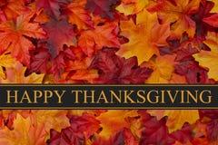 Ευτυχής χαιρετισμός ημέρας των ευχαριστιών στοκ εικόνες