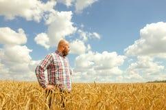 Ευτυχής χαμογελώντας επιτυχής καυκάσιος χρονών αγρότης τριάντα που στέκεται υπερήφανος μπροστά από τους τομείς σίτου του στοκ φωτογραφία