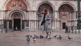 Ευτυχής όμορφος θηλυκός τουρίστας με το smartphone και περιστέρια σε διαθεσιμότητα στο τετράγωνο SAN Marco στη Βενετία, Ιταλία σε απόθεμα βίντεο