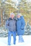Ευτυχής ώριμη τοποθέτηση ζευγών Στοκ φωτογραφίες με δικαίωμα ελεύθερης χρήσης