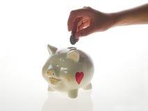 ευτυχής piggy τραπεζών Στοκ Εικόνες
